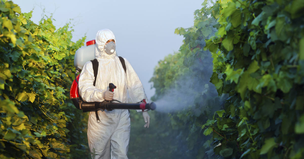 Seven strategies to reduce pesticide usage.